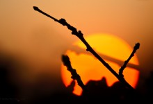 """Sonnenuntergang in Erwartung"" – (Bild 0024)"