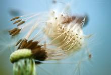 windig bis stürmisch (2) – (Bild 0035)