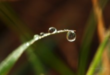 """""""In jedem Wassertropfen eine Welt"""" – (Bild 0136)"""